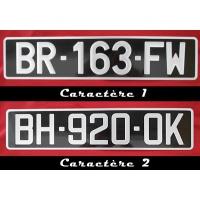 plaque d 39 immatriculation noire collection auto 45x10 cm. Black Bedroom Furniture Sets. Home Design Ideas