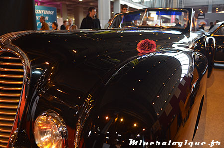 au nom de la rose retromobile 2014